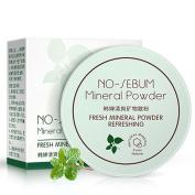 Vanvler Cosmetic Translucent Loose Powder Foundation Makeup Finishing Powder