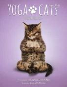 Yoga Cats Tarot Cards by Borris & DeNicola