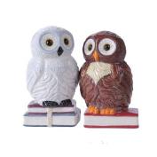 12cm Book Owls Hedwig Magnetic Salt and Pepper Shaker Kitchen Set
