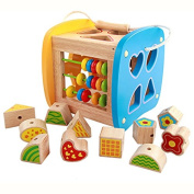 Wooden Activity Cubes Shapes Sorting Cube Early Development Toys for Toddlers
