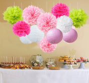 15pcs Party Tissue Pom Poms Paper Flowers Mixed Paper Lanterns Craft Kit for Pink Themed Birthday Party Decor Baby Shower Decor Bridal Shower Decor Wedding Party Supplies Decorations