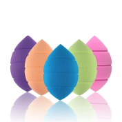RNTOP 5pcs Pro Beauty Makeup Foundation Puff Multi Shape Sponges