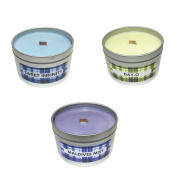 Fruity Pack Scented Candles (Sweet Infinity, Day-O, Maldives Mist) Soy Candles Aromatherapy, 240ml, 3 Pack