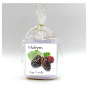 2 Mulberry Vase Candle Refills | 100 Hour Burn Time | Premium Soy Paraffin Wax Blend | Highly Scented | Self-Trimming Wick