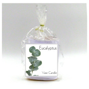 2 Eucalyptus Vase Candle Refills | 100 Hour Burn Time | Premium Soy Paraffin Wax Blend | Highly Scented | Self-Trimming Wick