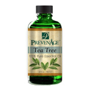 Aromatherapy Prevenage Tea Tree Essential Oil - Premium Quality - Professional and Therapeutic Grade - 100% Pure and Natural - 120ml