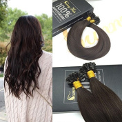 Sunny 50cm #2 Dark Brown Pre Bonded Keratin Fusion nail U Tip Long Straight Remy Human Hair 1g/s Total 50g Utip Hair Extensions