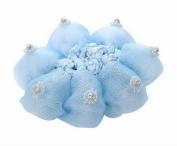 Pack of 2 Girl Mesh Hair Accessory Snood Ballet Dance Hair Net With Diamond Blue