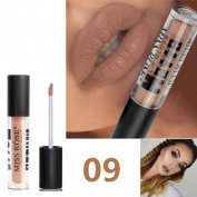 Lanhui 12 Colours Waterproof Matte Makeup Lip Gloss Long Lasting Lipstick Sand Pigment For Lovely Women