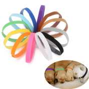 AGM 12 Colours Adjustable Reusable Puppy Identification ID Collars Pet Bands