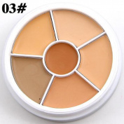 Professional Highlighting Concealer Cosmetic Beauty Kit,SMYTShop Makeup Naked Eyeshadow Palette 6 Colour Natural Nude Matte Shimmer Glitter Pigment Eye Shadow Pallete Set