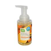 Bulk Saver Pack 3x9.5 FZ : CleanWell All-Natural Antibacterial Foaming Hand Wash Orange Vanilla