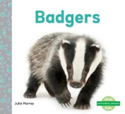 Badgers (Nocturnal Animals)