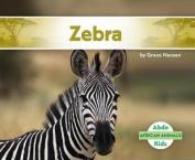 Zebra (African Animals)
