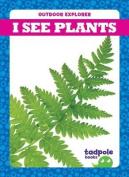 I See Plants