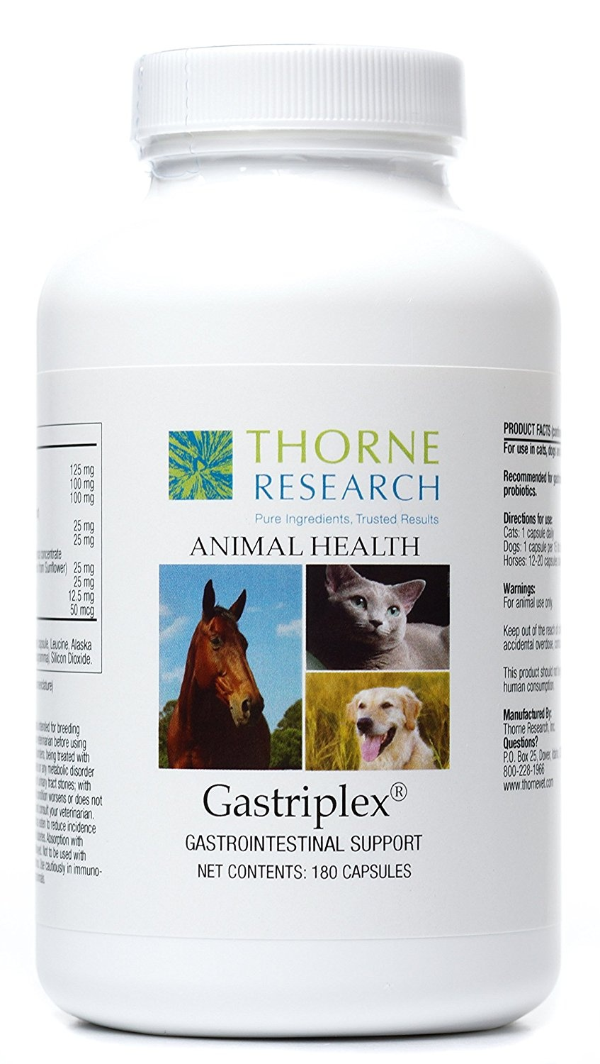 Thorne-Research-Veterinary-Gastriplex-Gastrointestinal-Support-for-Small