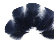 Moonlight Feather | 1 Pack - Navy Blue Turkey T-Base Plumage Feathers 15ml Dreamcatcher, Wedding, Costume Feathers