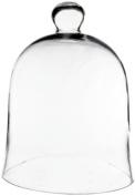 CYS® Glass Cloche Bell Jar, 41cm Cloche Bell Plant Terrarium.