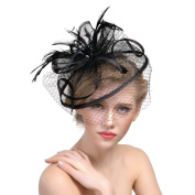 Women/Girls Elegant Fascinator Hat Feather Hairpin Mesh Looped Veil Headdress Bridal Feather Hair Clip Accessories for Wedding Performance Party