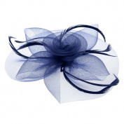 Women/Girls Hoop Feather Hair Fascinator Headbands, Rose Flower Hair Clip, Bridal Hair Accessories for Wedding, Veil Headdress for Performance, Party, Festivals