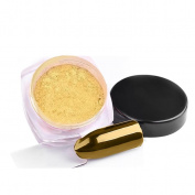 Vinjeely 2g/Box Gold Sliver Nail Glitter Powder Shinning Nail Mirror Powder