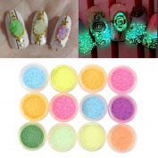 Vinjeely Nail Powder Neon Glow in the Dark Effect Nail Art Fluorescent Stone