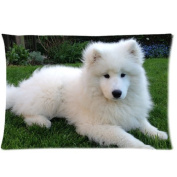 samoyed lying in the green grass field Zippered Pillow Cases Cover 50cm x 80cm