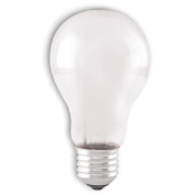 Edapt Halogen Classic E27 100W Frosted Warm White