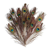 Natural Peacock Feathers 30 Pcs 25cm - 30cm Wedding Christmas Halloween Costume Decorations for Crafts