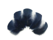 Moonlight Feathers | 0.1kg. - Navy Blue Turkey T-base Plumage Wholesale Feathers