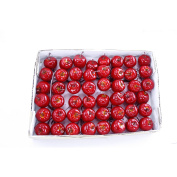 FloristryWarehouse Artificial Mini Apple Pick Deep Shiny Red 2.5cm Diameter Box of 48
