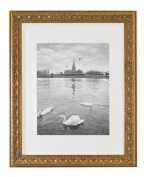 Golden State Art, Ornate Finish Style, 11x14 Wall Picture Frame with Ivory Mat for 8x10 Picture and Real Glass, Colour