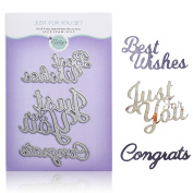 Congratulations Die Set of 3 – Words Metal Cutting Dies for DIY Greeting Card Making, Scrapbooking, Paper Crafting Supplies – Just for You, Best Wishes, Congrats Sentiments by Matty's Crafting Joy
