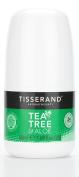 Tisserand Tea Tree and Aloe 24 Hour Deodorant