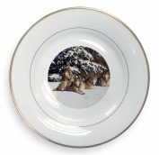 Wolves in Snow Gold Rim Plate in Gift Box Christmas Present