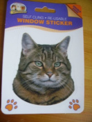 Tabby Cat double sided window sticker car home re-usable