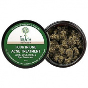 TreeActiv Four-in-One Acne Treatment   Wash, Scrub, Mask, and Spot Treatment  