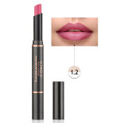 12 Colours Lip Glosses Professional Girls Make-up Lipstick Long-lasting for Women by TOPUNDER R