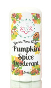 Organic Deodorant- Pumpkin Spice - . Healthy All Natural Deodorant Detoxes with No Aluminium - Handcrafted in New Hampshire - Deodorant That Works