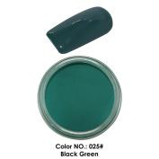 C & I Dipping Powder Colour No.025 Black Green Blue Colour System