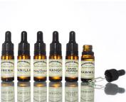 Bedfordshire Beard Co Bear Oil Multipack