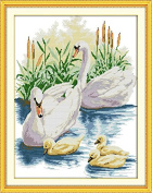 Cross Stitch Embroidery Starter Kit including 14 Count 41cm x 50cm classic reserve Aida coloured threads and tools The Swan's Family