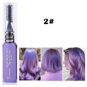 1x Professional Hair Chalk Vibrant Colours Tools Hair Temporary Hair Dye Hair Colour Mascara Purple