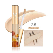Fheaven Base Professional Beauty Huamianli Makeup Covers Primer Faced Concealer