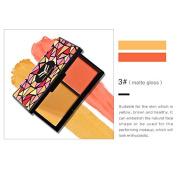 2 Colour Makeup Blusher Pressed Powder Bronzer Cheek Colour Kit- Beauty Blushing kit (#3