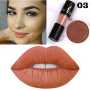 12 Colours Lip Glosses Professional Girls Cosmetics Lipstick Long-lasting for Women by TOPUNDER