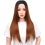 AISI HAIR Long Ombre Wig Straight Synthetic Women's Wigs Heat Resistant Hair Dark Root Two Tone Brown Wig