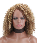Kalyss Premium Synthetic Afro Kinky Curly L Part Hair Wigs For African American Women
