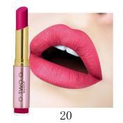 Febecool Lipstick Waterproof Sexy Lip Gloss Hydrating Long Lasting Lip Scrubs Lip Liner Cosmetics Beauty Makeup