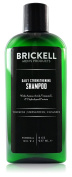 Brickell Men's Daily Strengthening Shampoo for Men - Natural & Organic Featuring Mint & Tea Tree Oil – 240ml